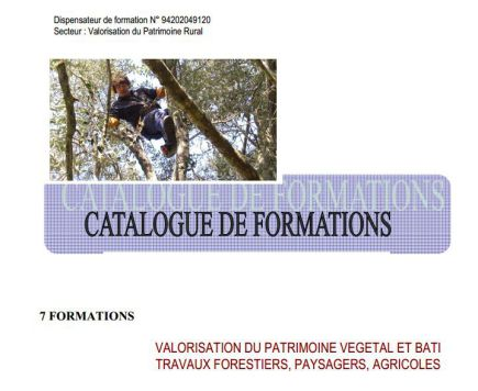 Nos Catalogues de Formations et de prestations